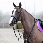Horze Venice Combined Martingale with Breast Harnessplate