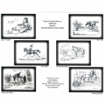 Jude Too Black and White Humorous Horse Placemats
