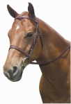 KINCADE PADDED BRAIDED BRIDLE