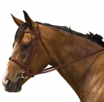 Kincade Padded Plain Raised Bridle With Reins