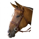 Kincade Padded Square Raised Bridle with Reins