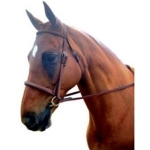 Kincade Raised Padded Fancy Stitched Bridle with Reins