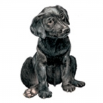 Labrador Retriever Black Puppy Jumbo Dog Magnet