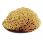 Large Natural Bath/Shower Sea Sponge