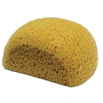 Large Turtle Back Bath Sponge