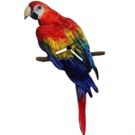Macaw Scarlet Shaped Clock