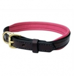 Perri's Leather Padded Leather Dog Collar