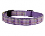 Perri's Leather Ribbon Dog Collar