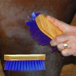 Pony Brush - Blue