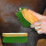 Pony Brush - Green