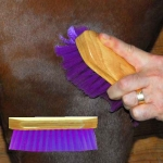 Pony Brush - Purple