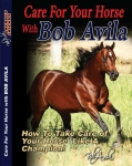 Pro Choice Bob Avila DVD Series - CARE FOR YOUR HORSE DVD