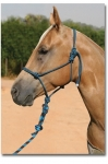 Pro Choice Rope Halter with 10' Lead
