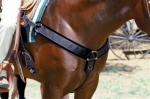 Pro Choice SMx Neoprene Breast Collar