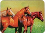 River's Edge Tempered Glass Cutting Board with 3 Beautiful Horses
