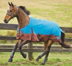 Saxon 1200D Standard Neck Medium Turnout Blanket