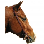 Shenandoah Western One Ear Bridle