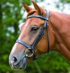 Shires Equestrian Bude Snaffle Bridle