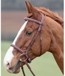 Shires Equestrian Lexington Bridle