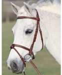 Shires Equestrian Washington Bridle