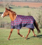 Shires Winter Highlander 600 Denier Standard Neck Turnout Blanket