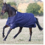Shires Winter Highlander 600 Denier Warmblood Turnout Blanket
