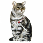 Silver Tabby Cat Shaped Clock
