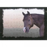 Spill Resistant Placemats- Pokey & Brands