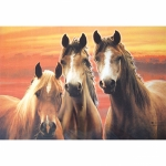 Spill Resistant Placemats- Three Horses