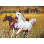 Spill Resistant Placemats- Two Horses Running