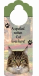 Spoiled Cat Doorknob Notes - Maine Coon Cat