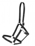 "Tory leather 1"" Halter with Single Crown Buckle and Snap Throat"
