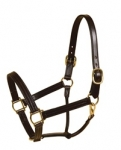 "TORY Leather 1"" Triple Stitched Halter with Throat Snap"