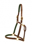 "Tory Leather 3/4"" Padded Bridle Leather Show Halter"