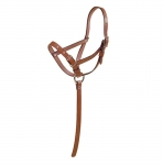 Tory Leather - Leather Foal Slip Halter with Adjustable Nose