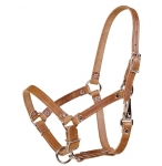 Tory Leather - Leather Riveted Foal Halter
