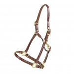 Tory Leather Raised Halter with Adjustable Nose and Throat Snap