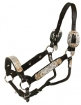 Tory Leather Santa Alicia Show Halter w/Lead