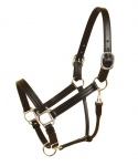 Tory Leather Triple Stitched Halter with Nickel Hardware