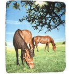 Two Horses In Pasture Blanket
