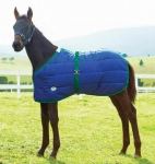 Weatherbeeta 420D Adjustable Newborn Foal Blanket