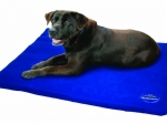 Weatherbeeta Dog Bed
