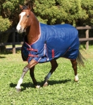 Weatherbeeta Original 1200D High Neck Medium Turnout Blanket