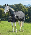 Weatherbeeta Original 1680D Detach-a-Neck Medium Turnout Blanket