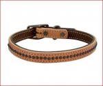 "Weaver Leather Outlaw Dog Collar 5/8"" & 3/4"""