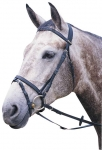WINTEC FLASH BRIDLE
